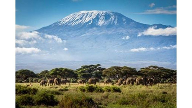 Howco Team Climbs Kilimanjaro for Cancer Research